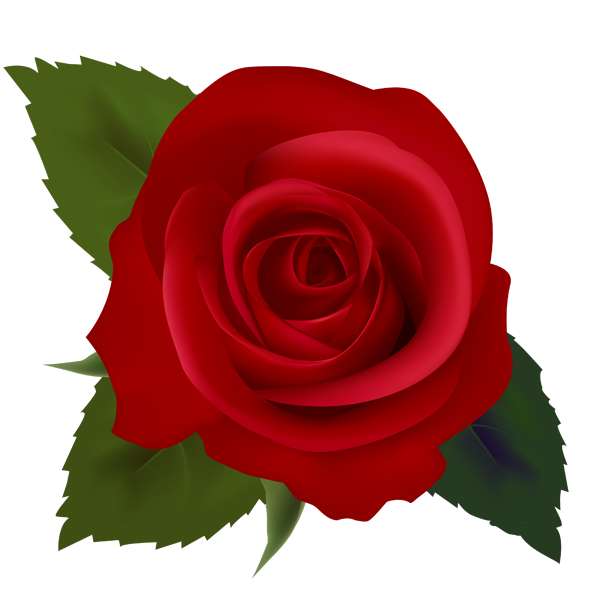 Flowers pinterest rose images. Clipart roses thorn