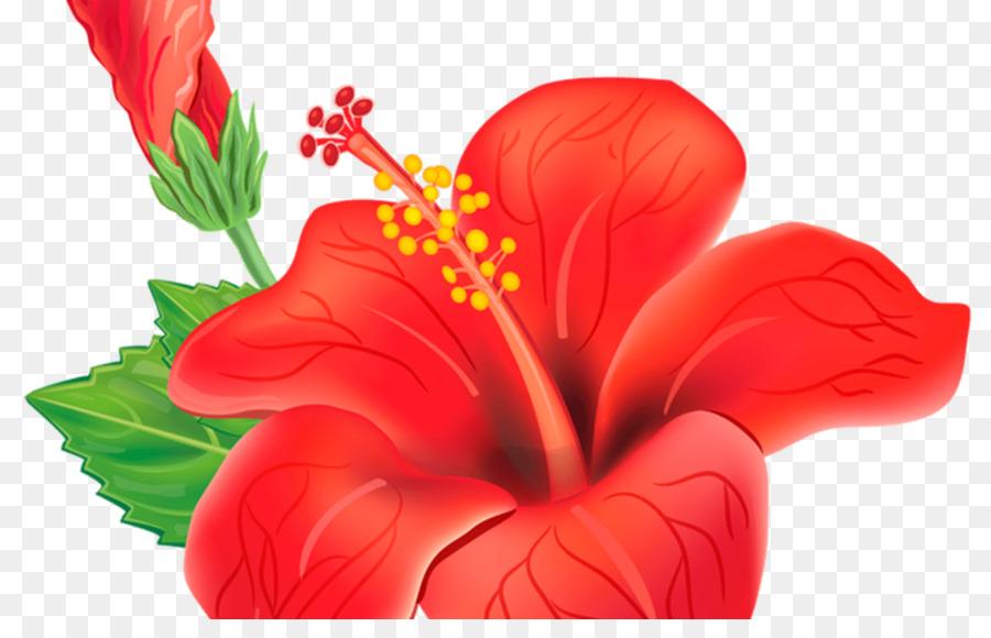 Background flower illustration . Flowers clipart shoe