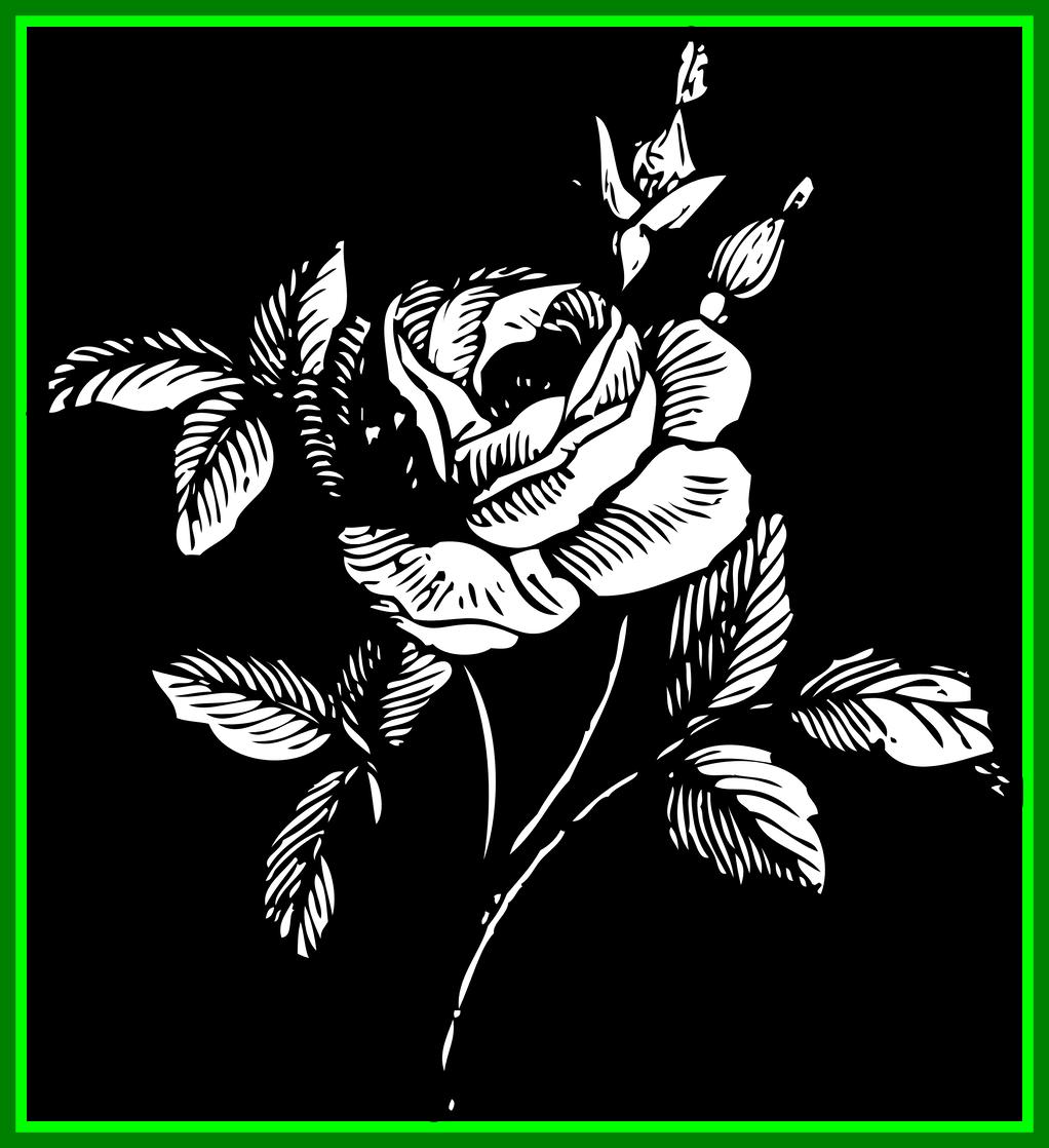 Stunning of in black. Clipart flowers skull