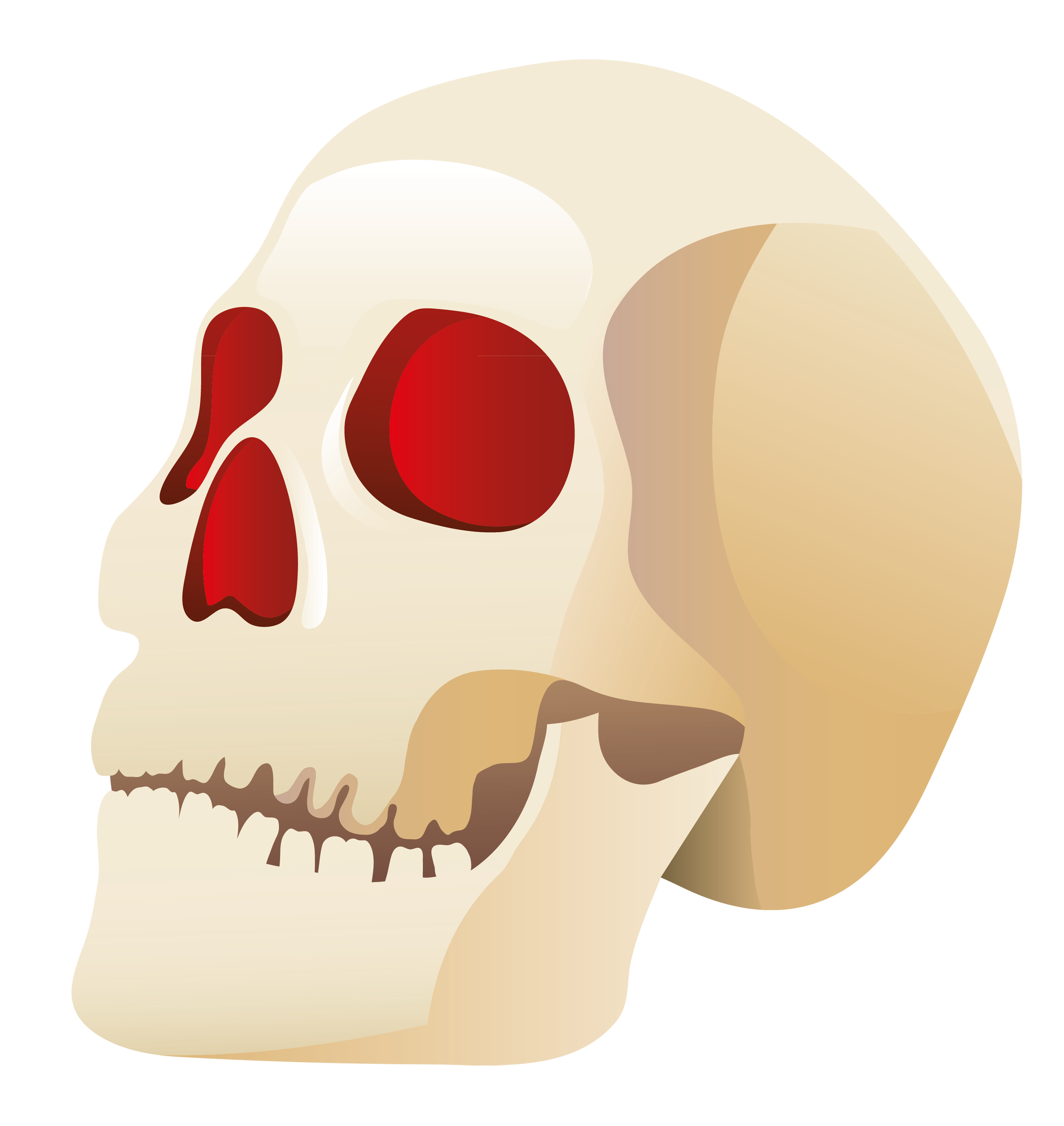 Clipart halloween skull. Gallery yopriceville high quality