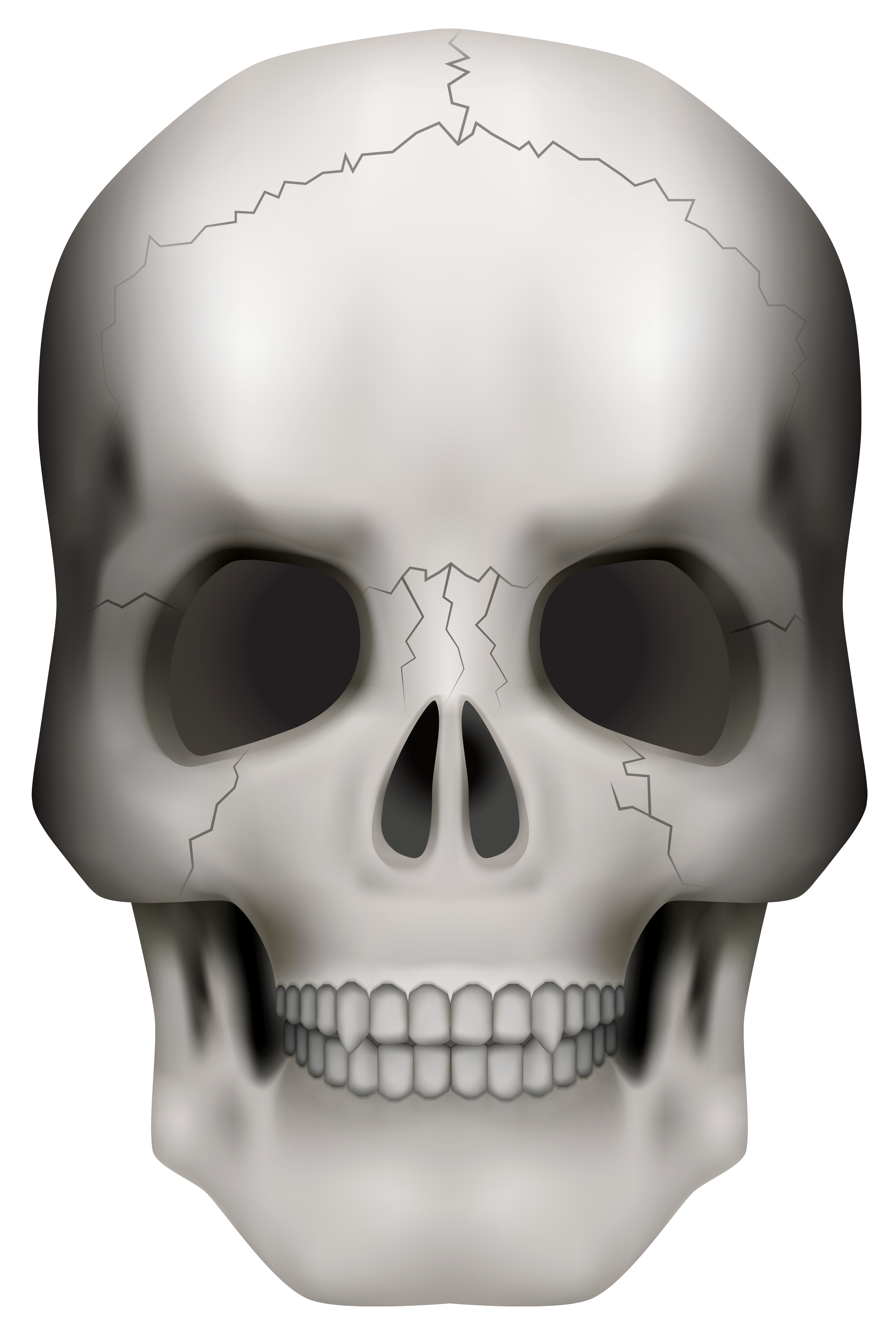 Skull png image gallery. Clipart halloween face