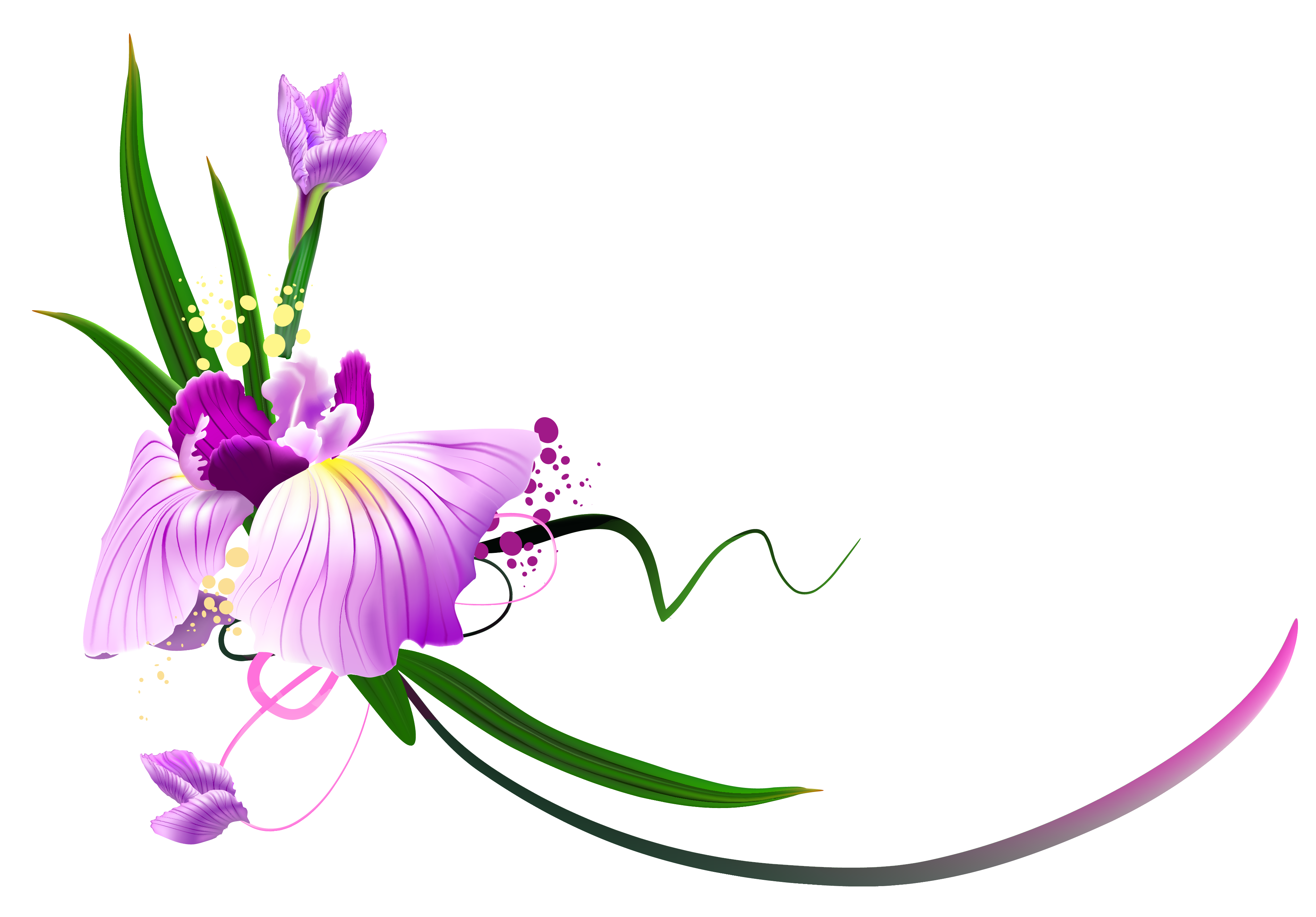 Vines clipart purple flower. Beautiful floral decor png