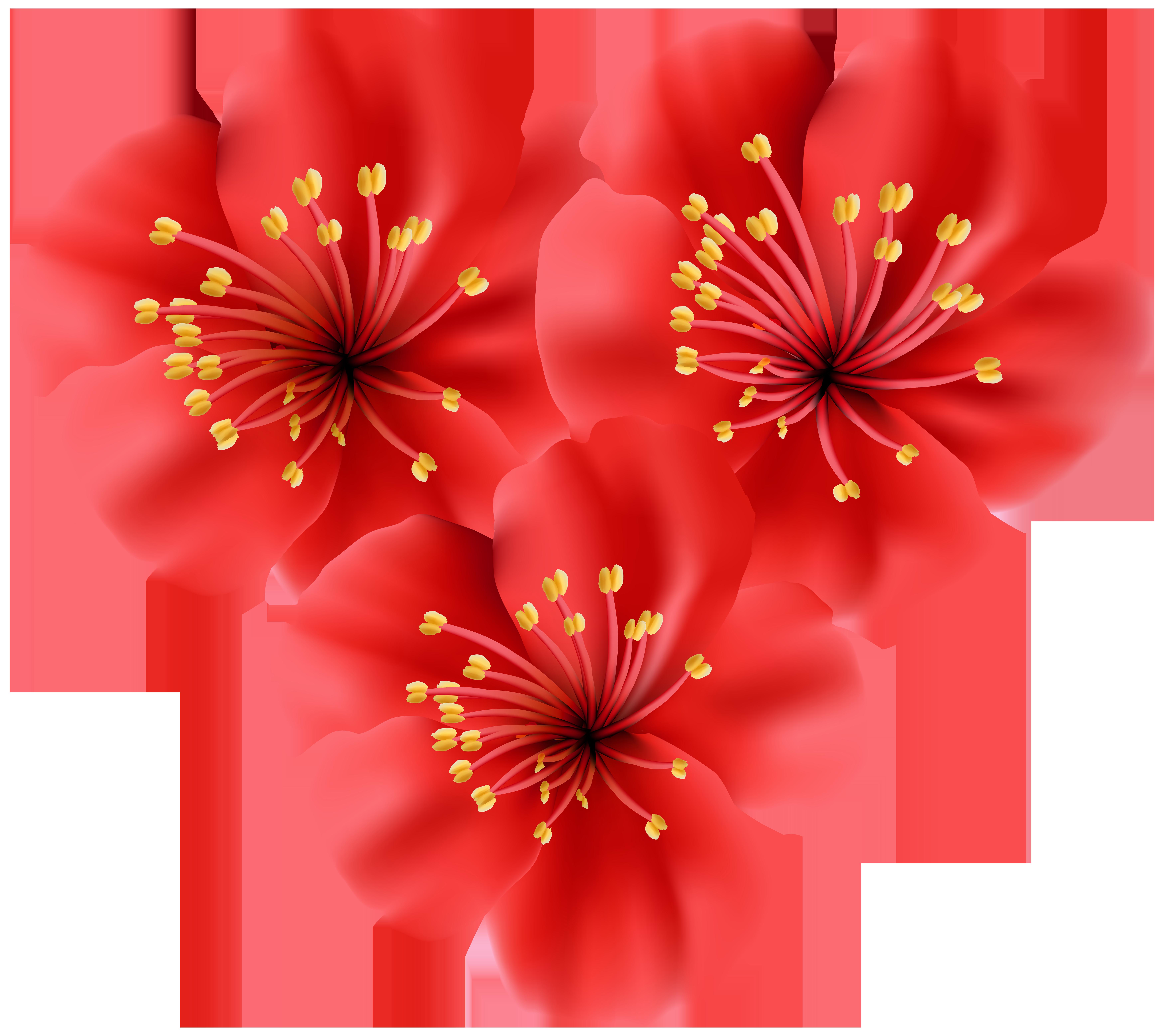 Flowers heart clip art. Tropical flower png