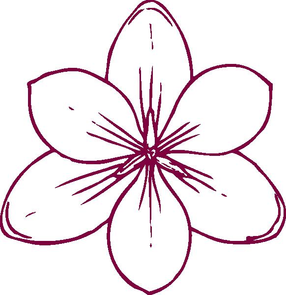 Flower line art png. Magnolia clipart free download