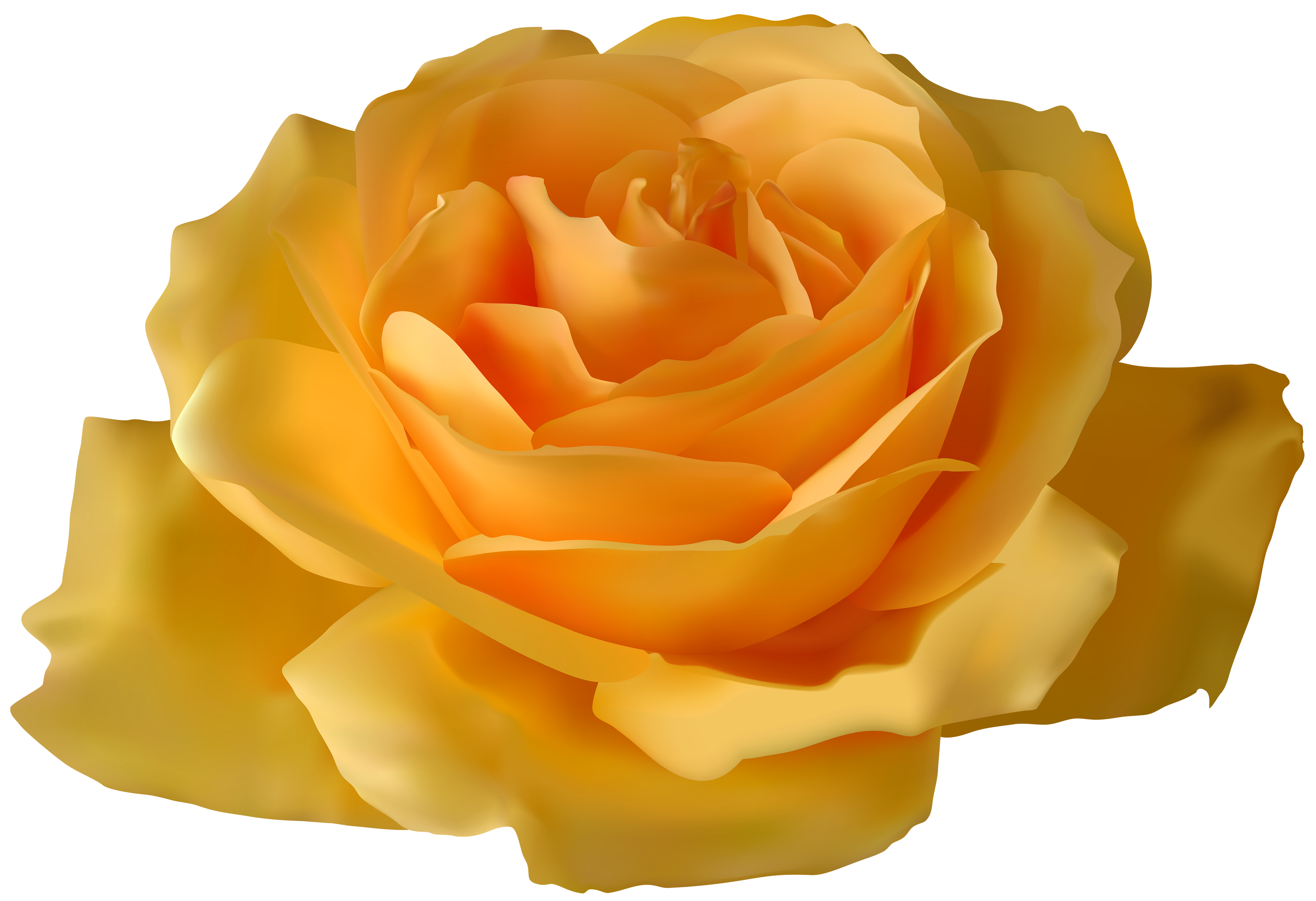 Yellow flower png. Rose clipart best web
