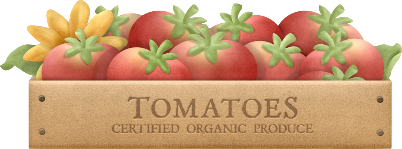 Tomatoes clipart printable. Vegetablecrate png cookbook ideas