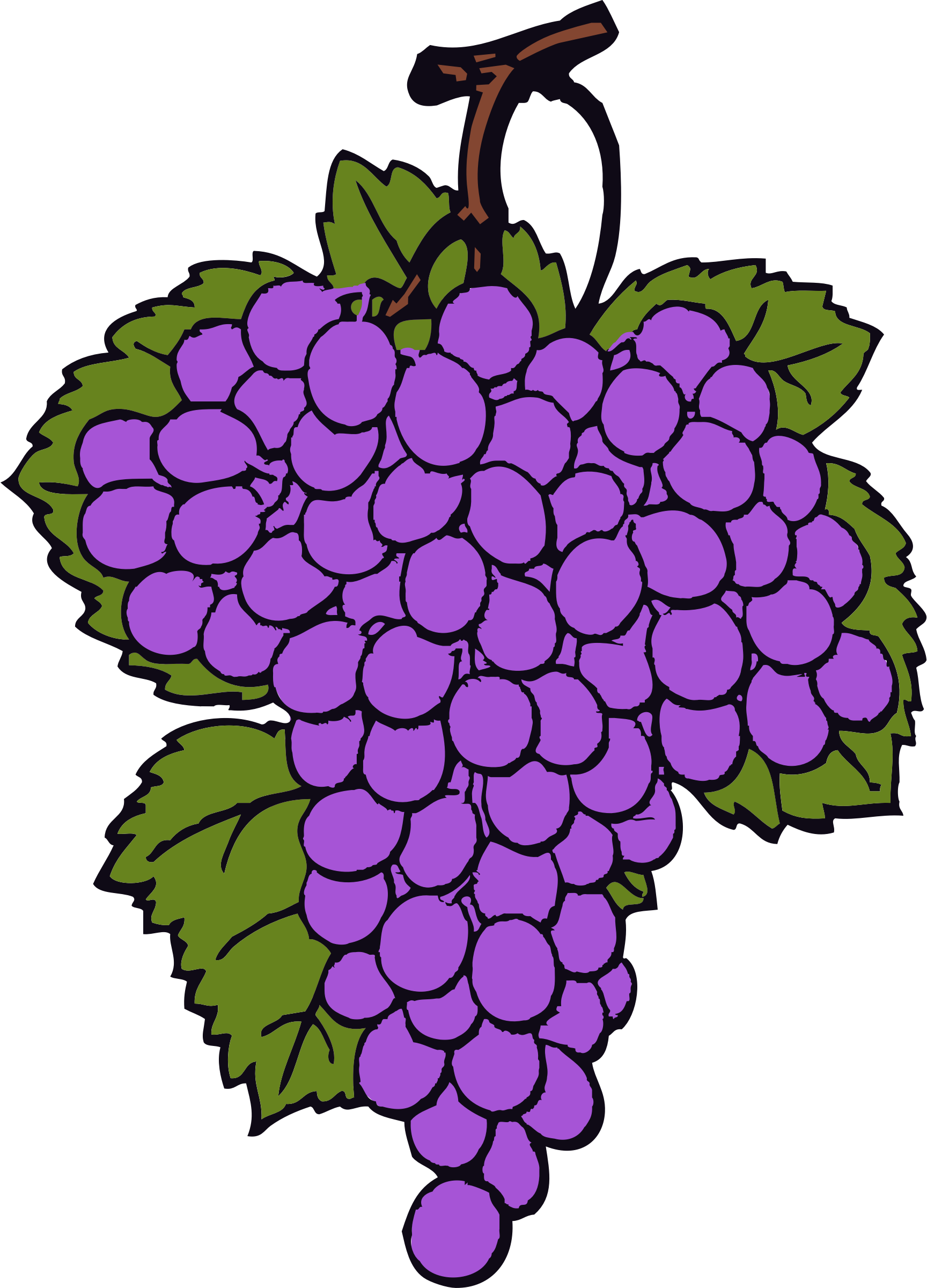 Grape cluster big image. Grapes clipart violet