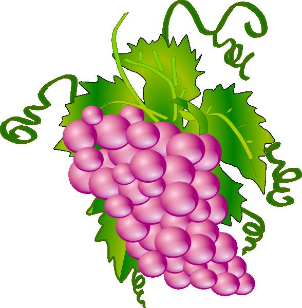 Clip art at clker. Grapes clipart purple food