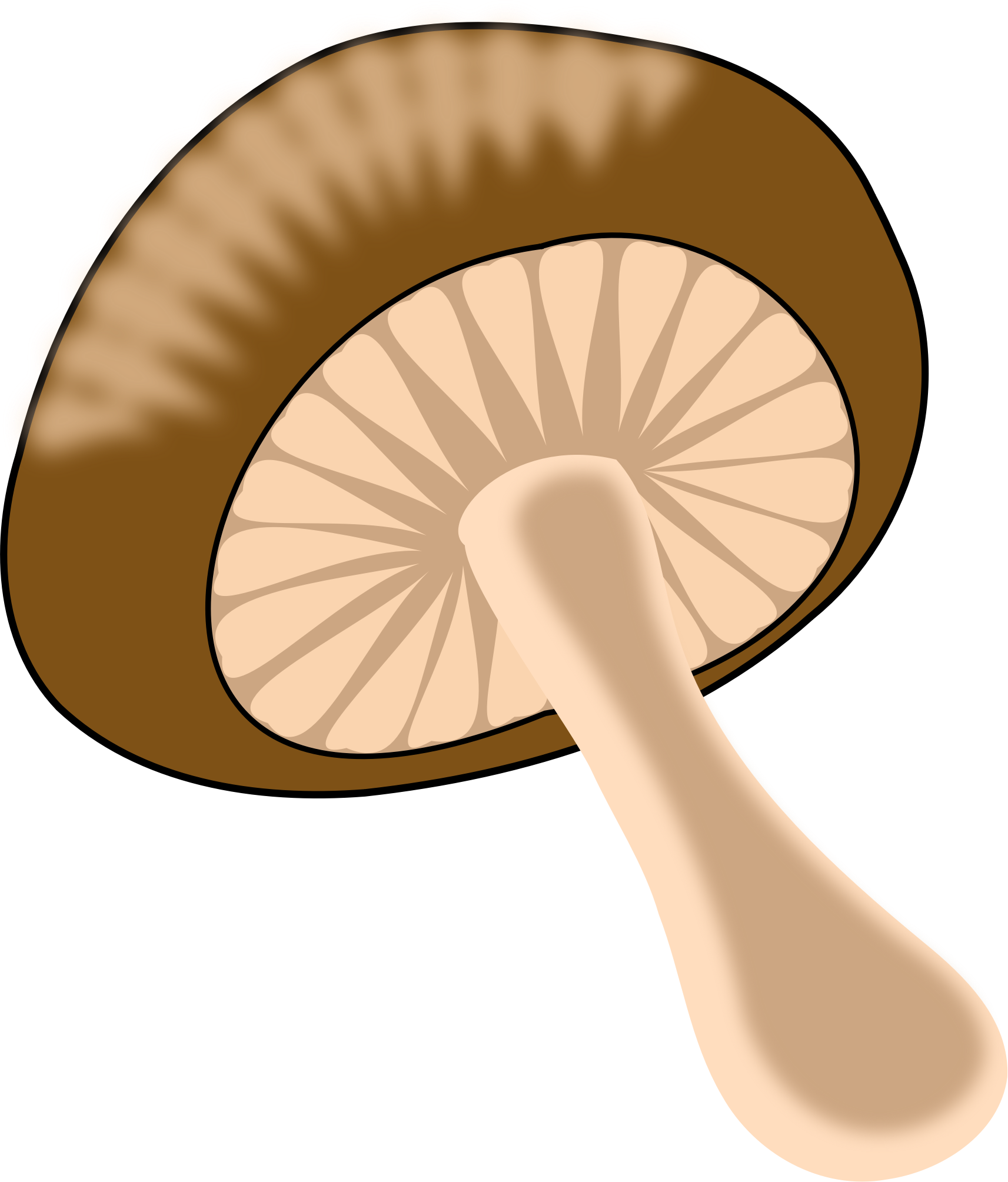 Clipart png mushroom. Green orange big image