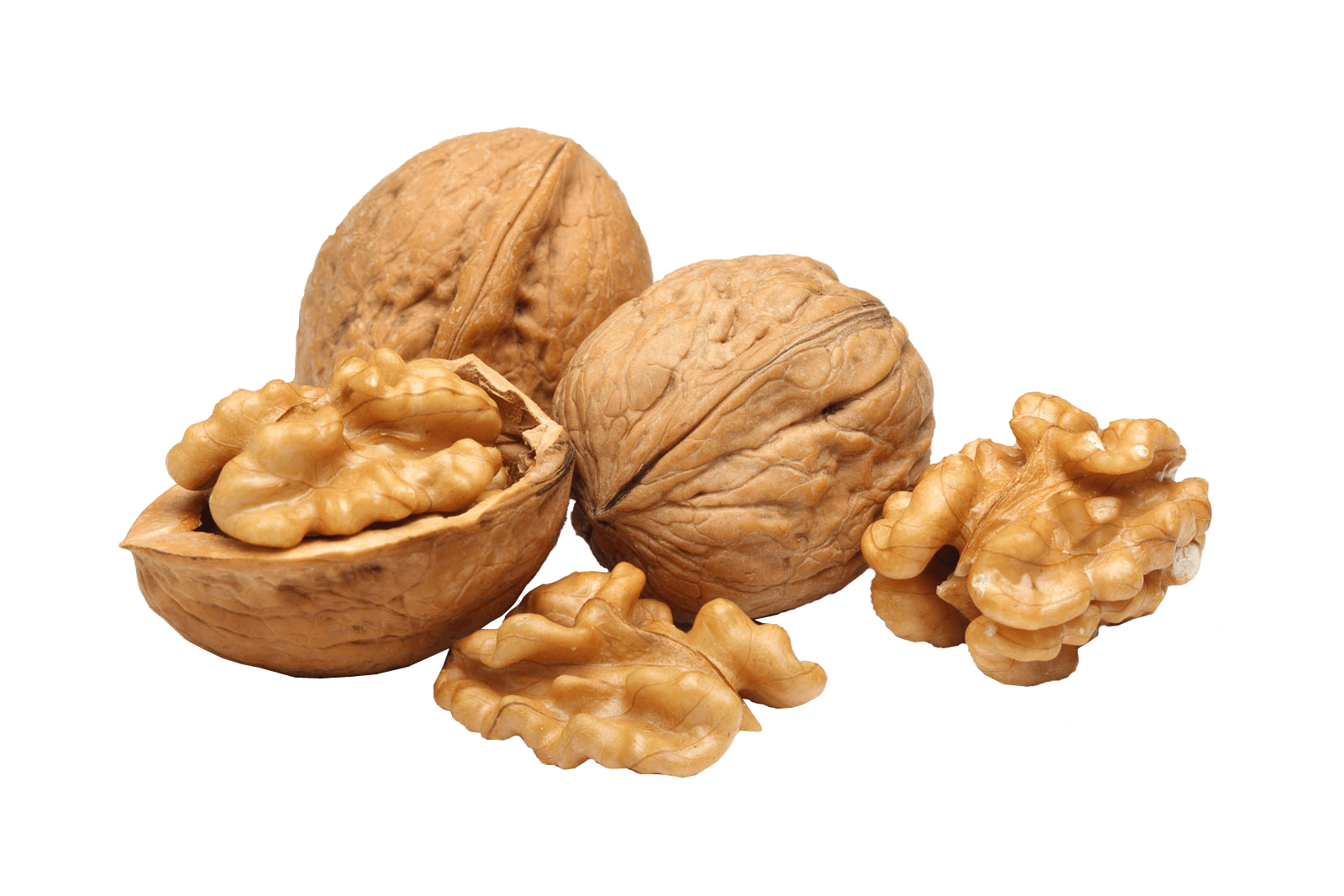 Walnut group transparent png. Clipart food nuts