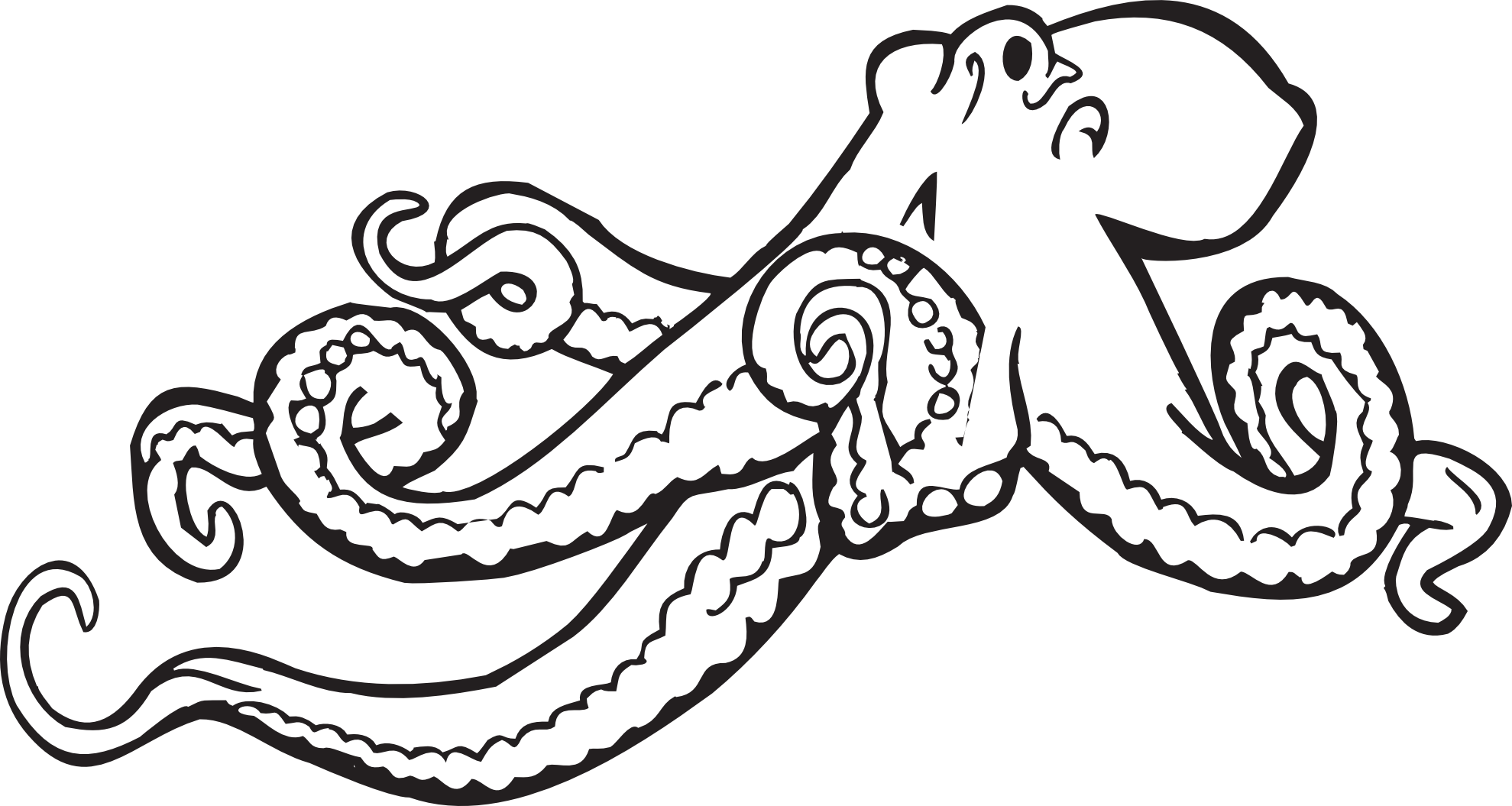 Clipart turtle vector. Octopus black and white