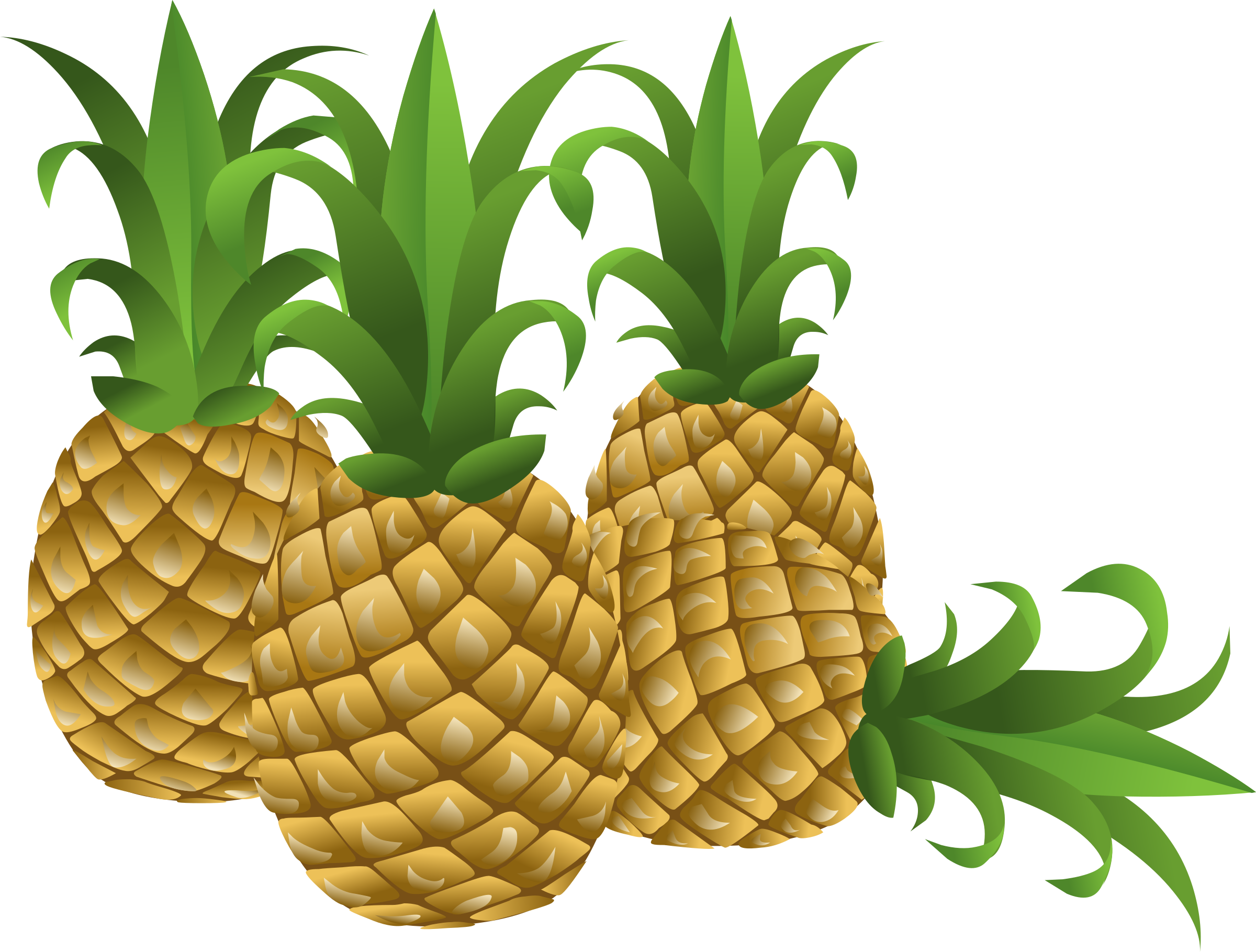 Food big image png. Pineapple clipart pdf