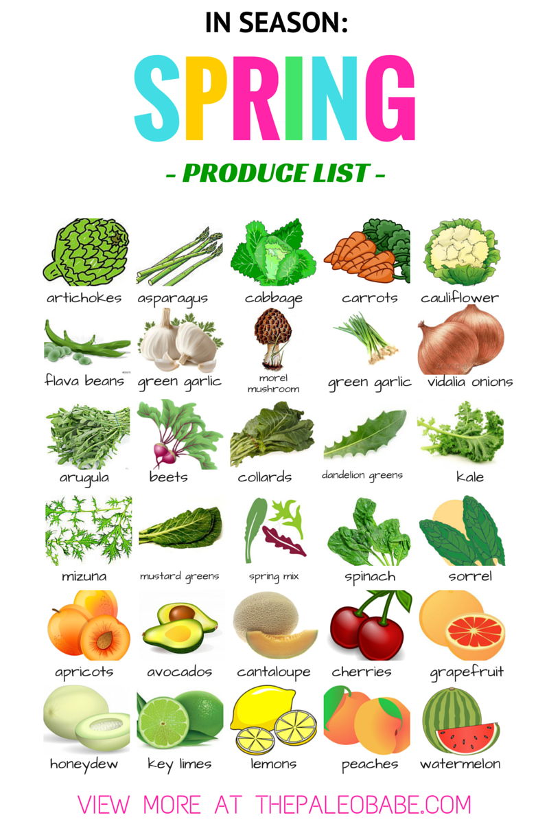 Clipart lunch spring. Free fruits cliparts download