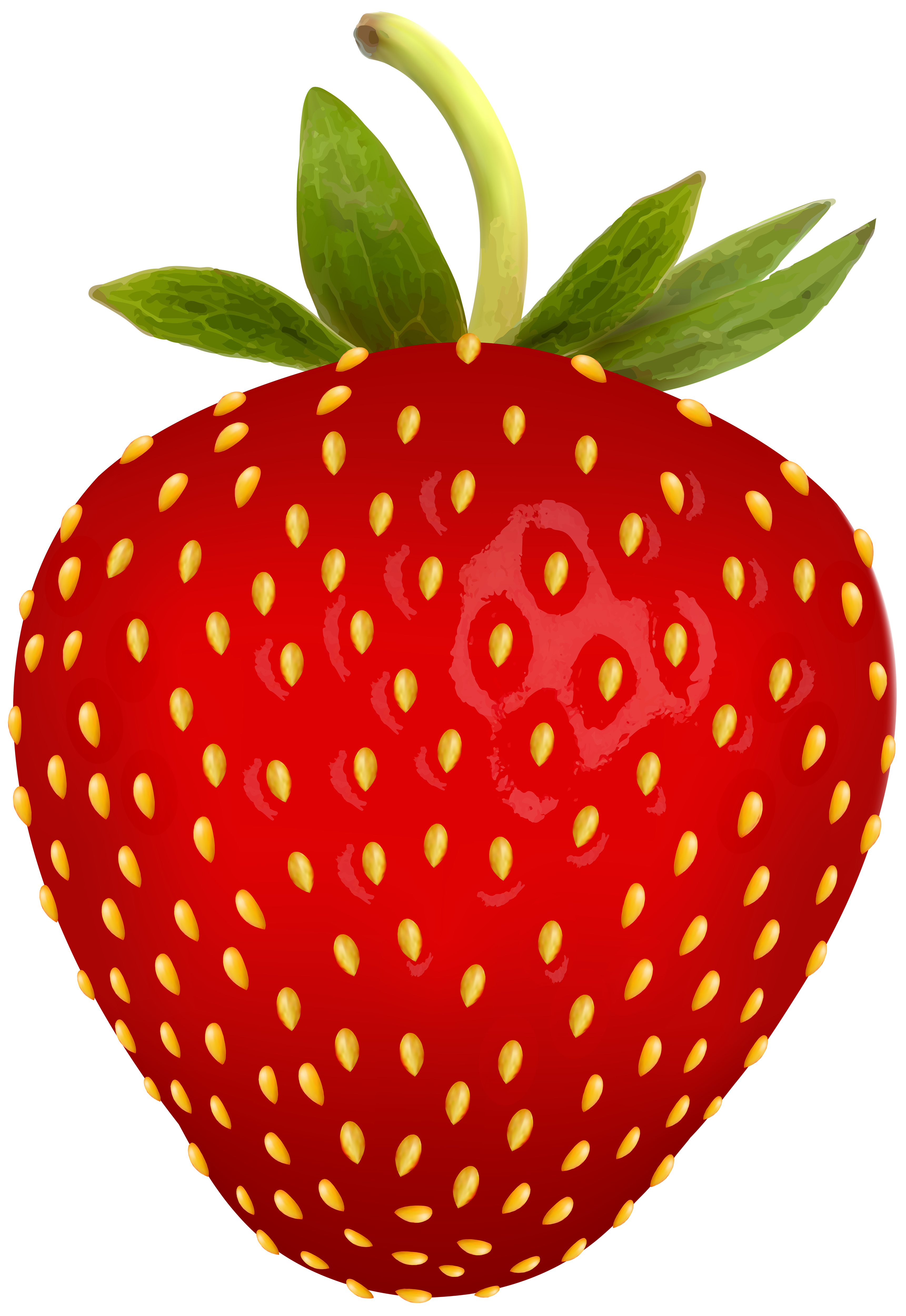 Strawberry png free clip. Clipart fruit summer fruit