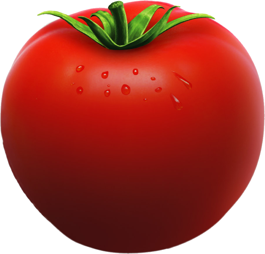Tomato vegetable cut out. Tomatoes clipart one