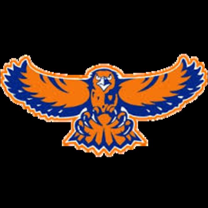 The hoffman estates hawks. Clipart football hawk