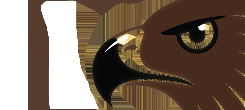 Hawthorn citz junior club. Clipart football hawk