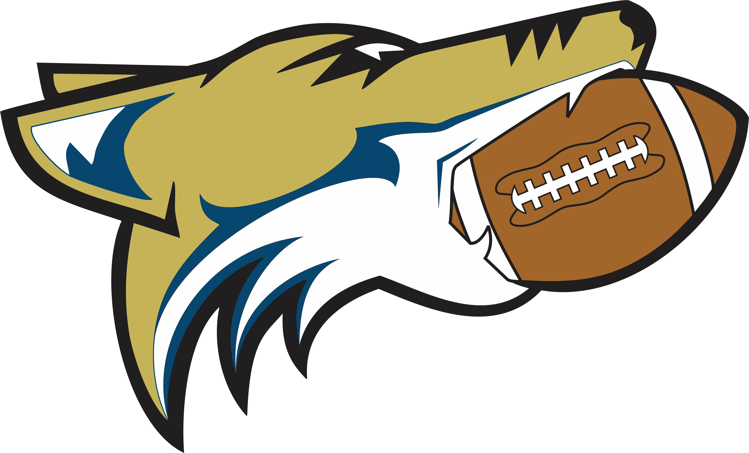 Clipart football hawk. About the hawks