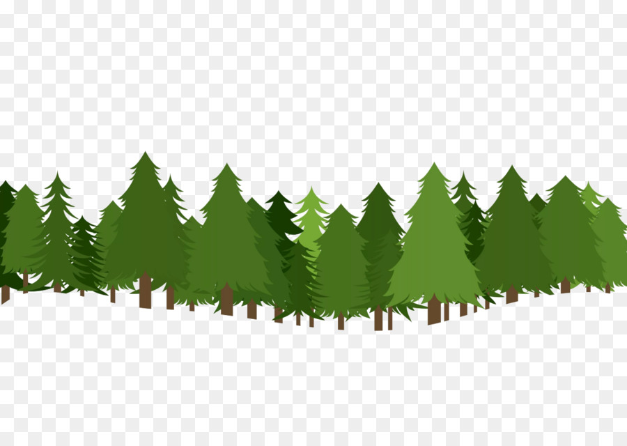 Christmas tree pine clip. Forest clipart