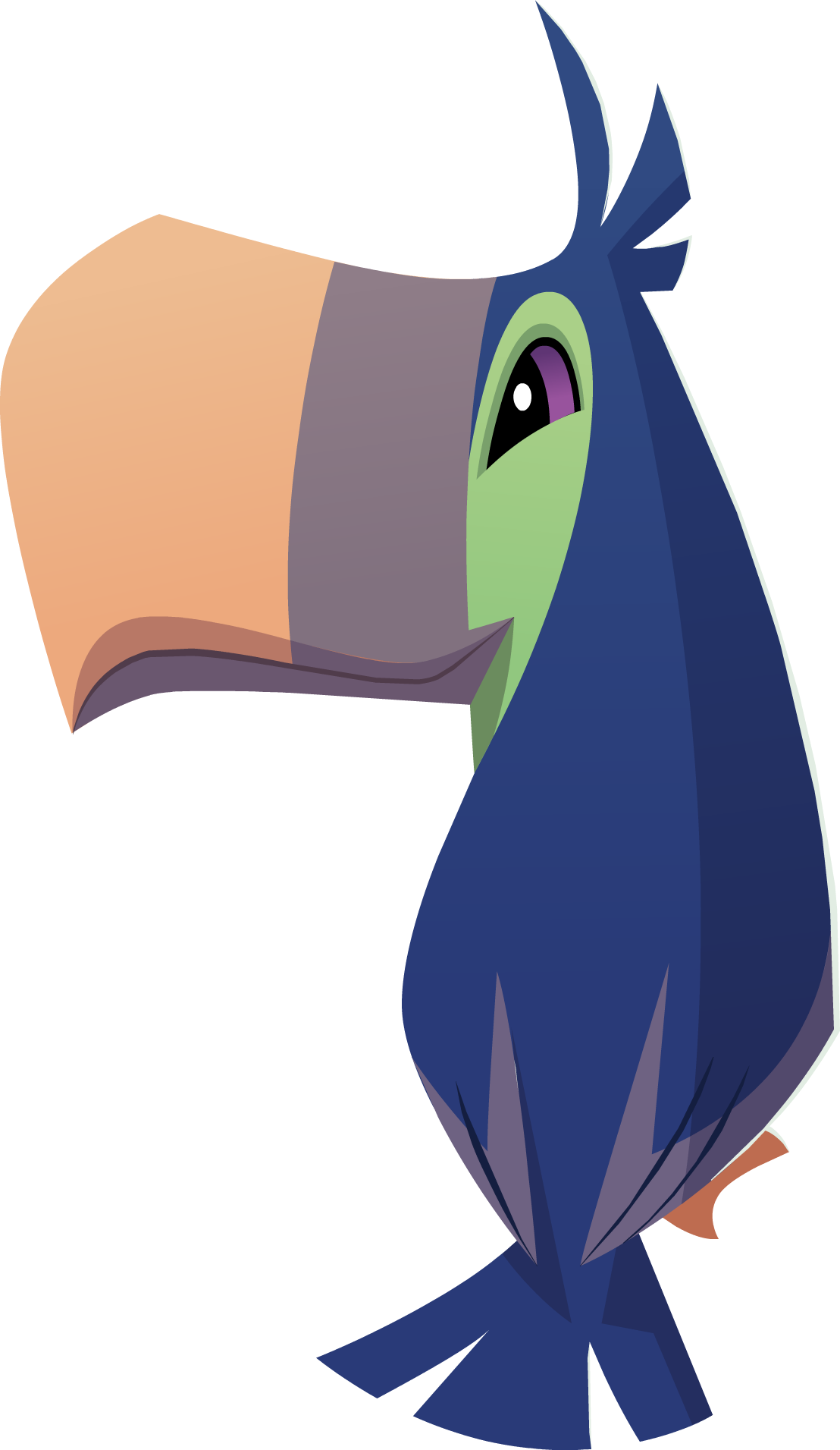 Image png animal jam. Toucan clipart blue