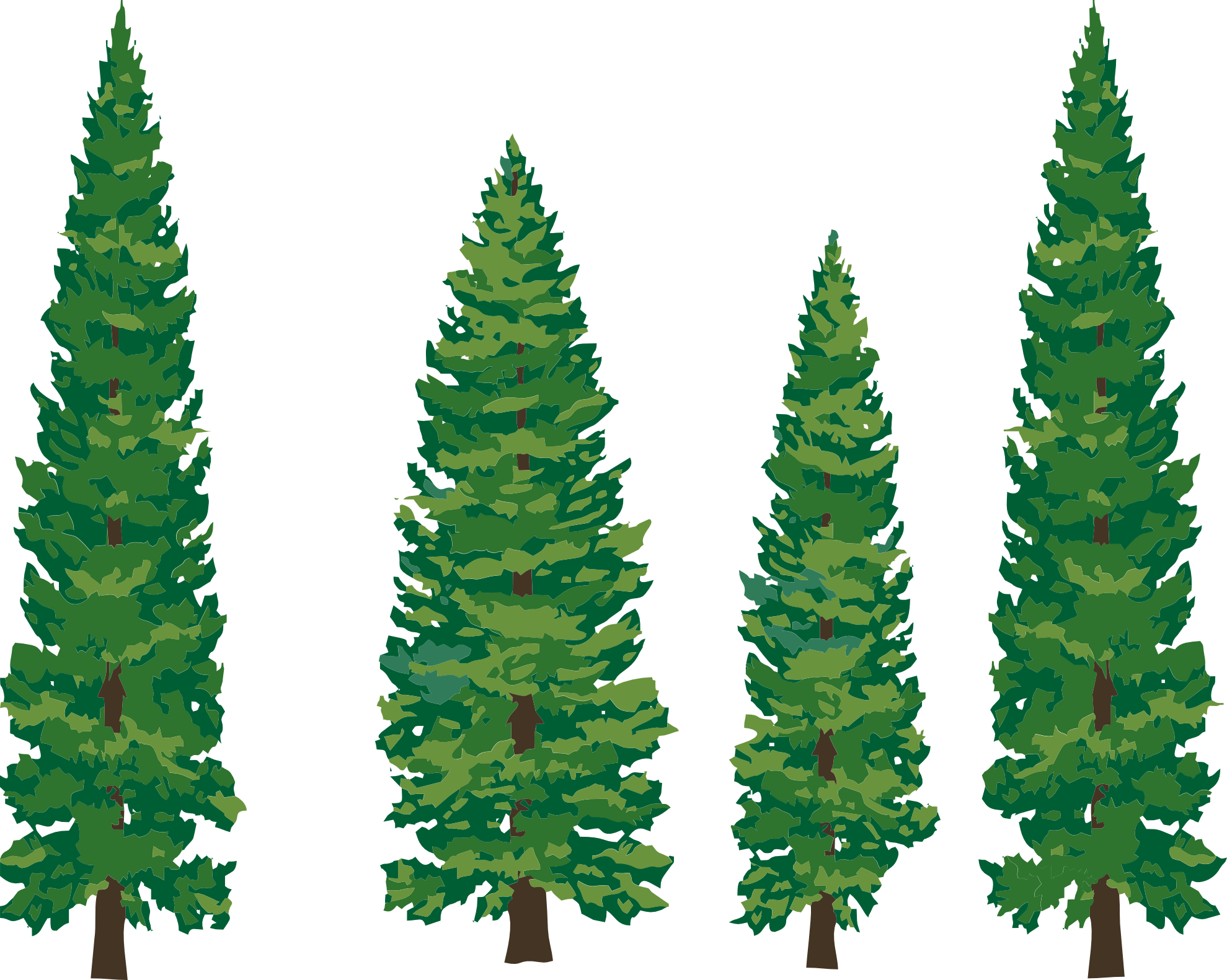 Cone clipart tall. Green forest trees desktop