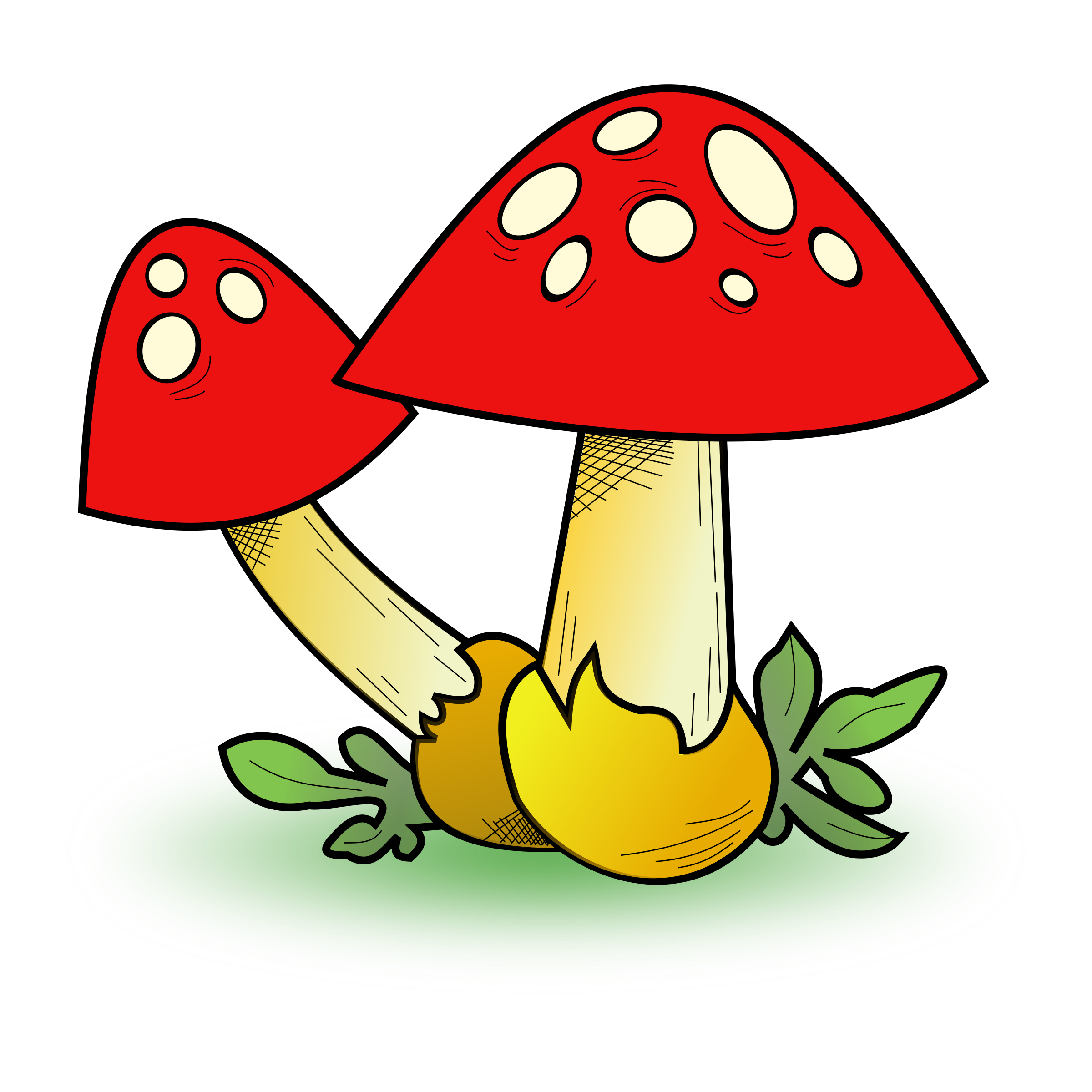 Mushrooms clipart fungus. Fungal forest big image