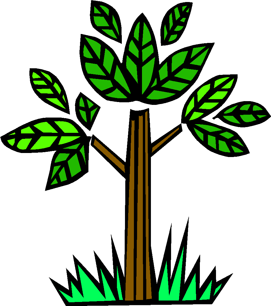 Clipart forest deforestation. Should people be allowed