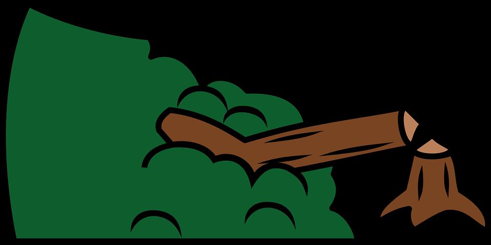 Clipart forest deforestation. Destruction cliparthot of budgets