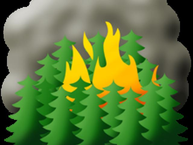 Fire clipart forest fire. X carwad net