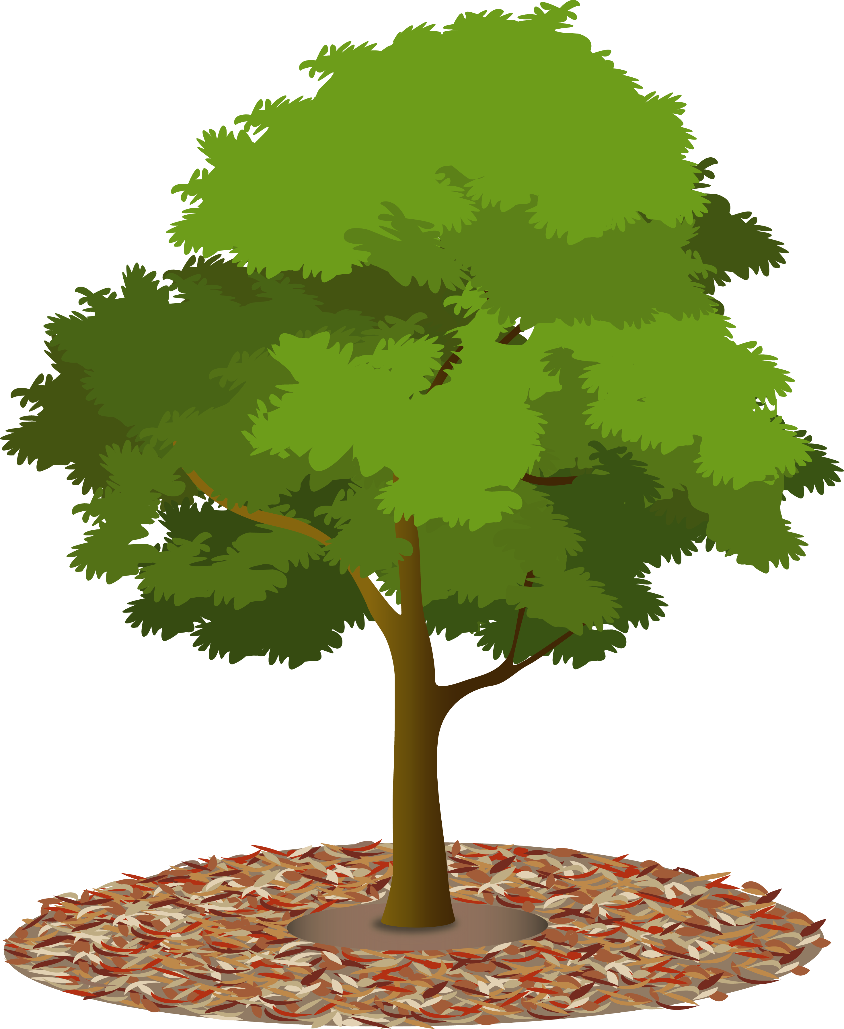 Urban forest council trees. Hills clipart inland