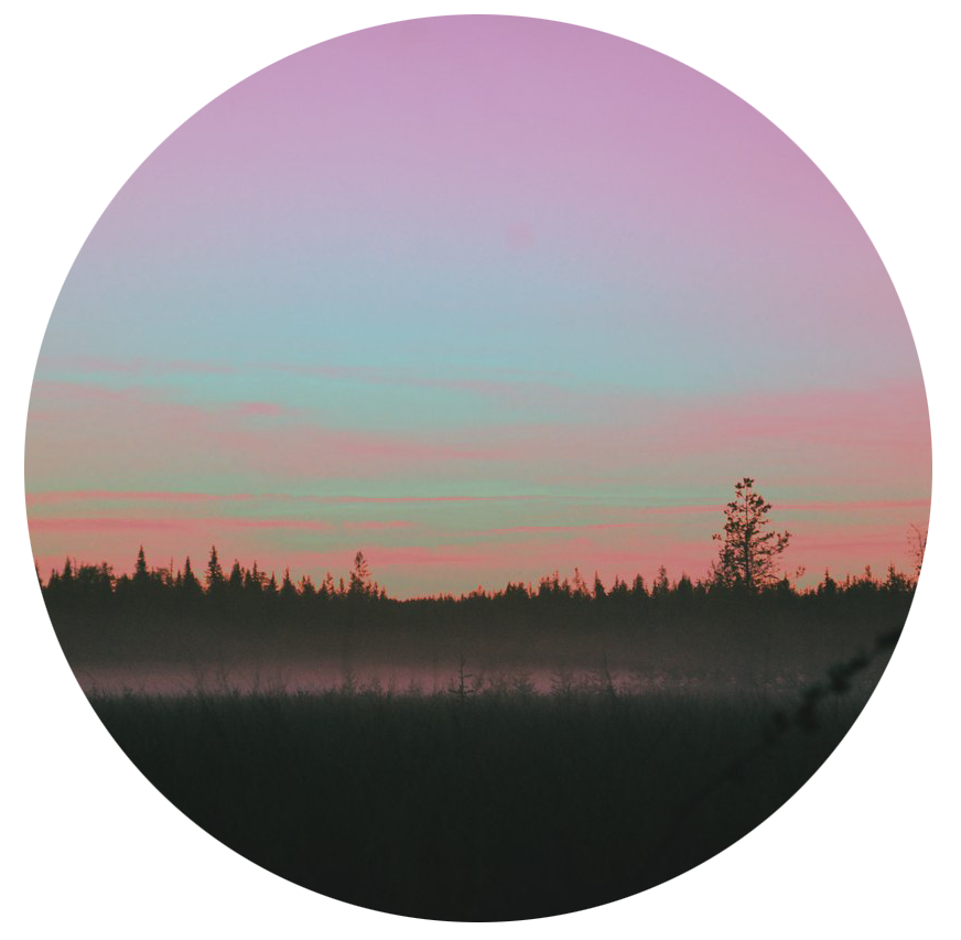 Tumblr forest nature circle. Morning clipart sunset sunrise