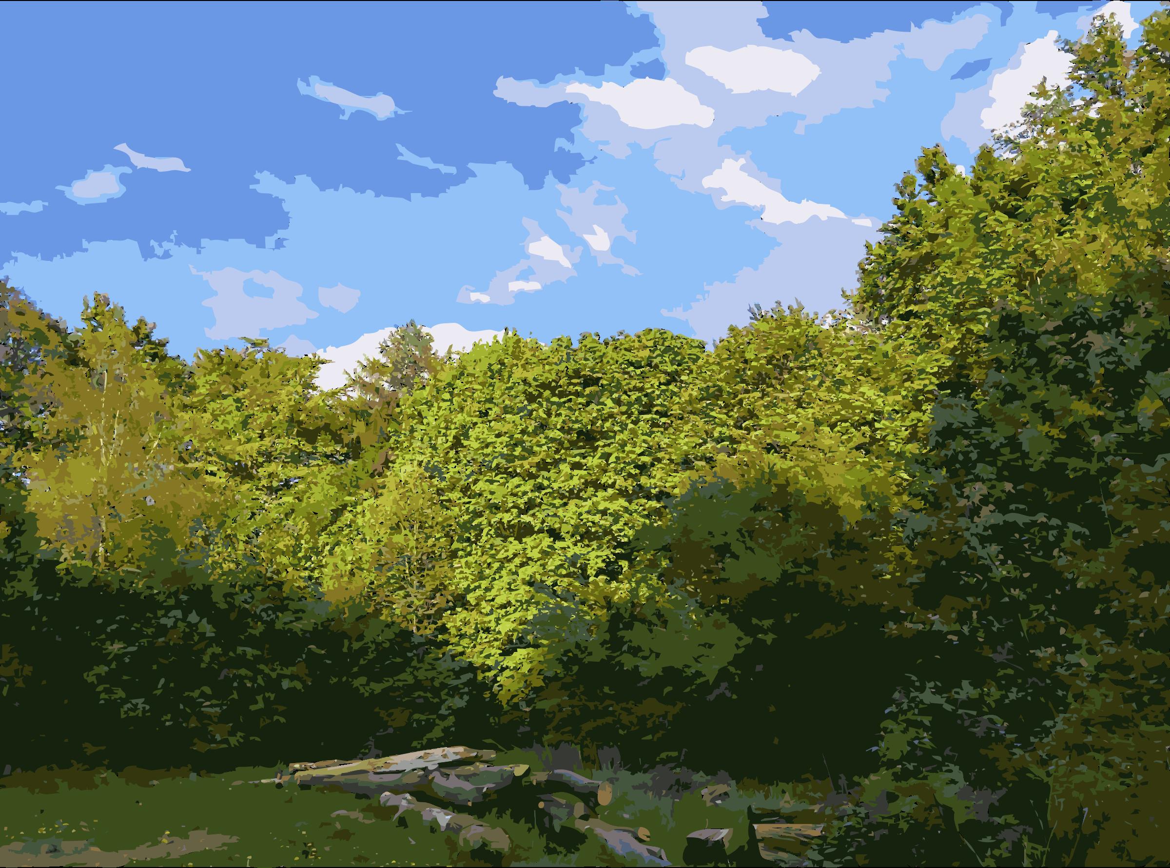 Clipart forest landscape. Lichtscheid again big image