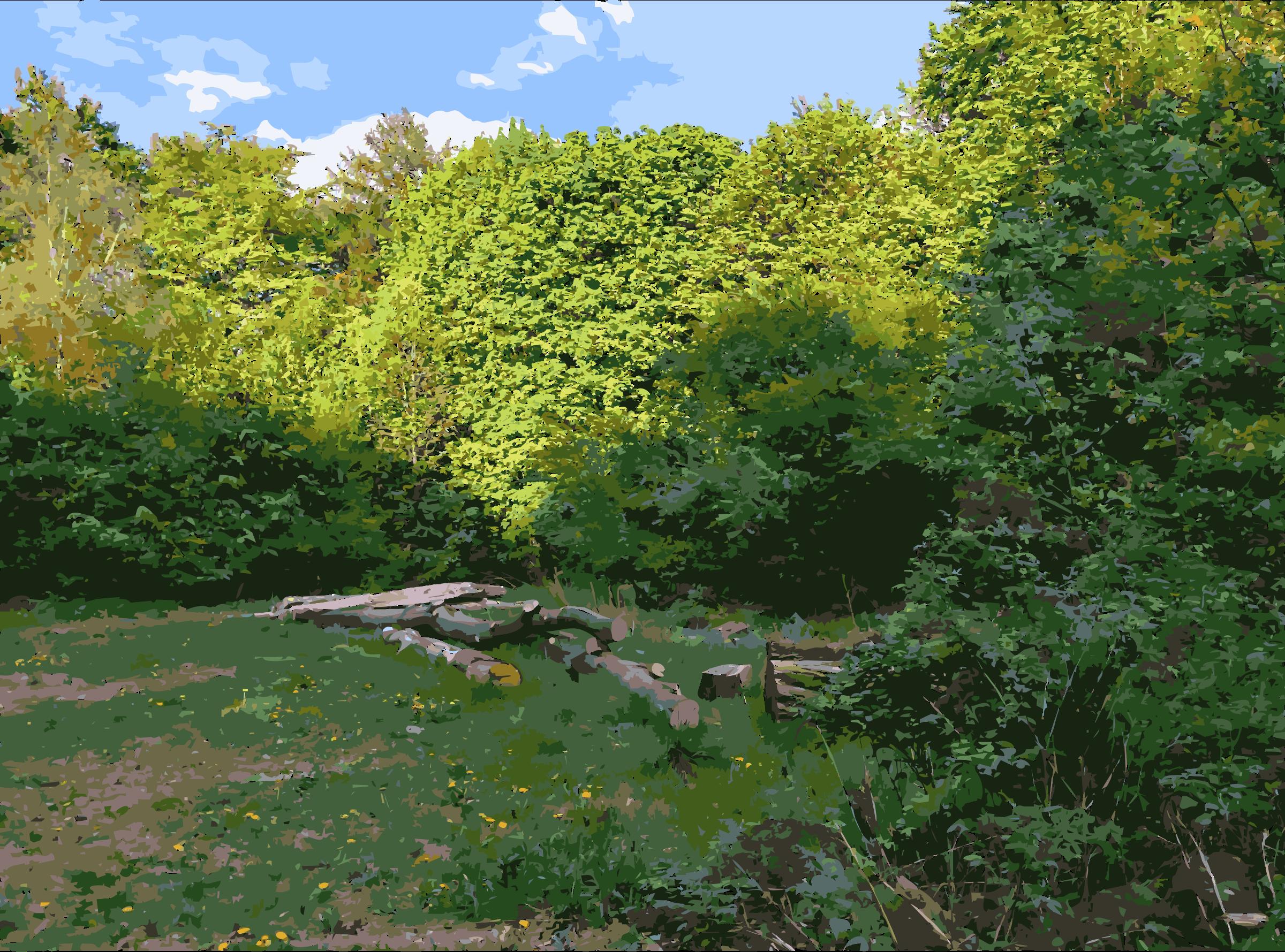 Lichtscheid again big image. Clipart forest landscape