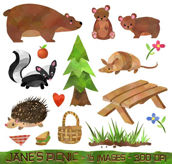 Picnic clipart forest. Watercolor animals items