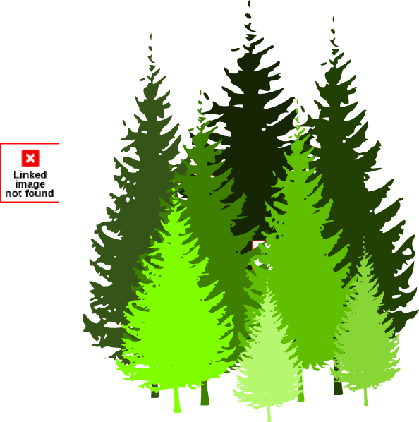 collection of tree. Clipart trees pine