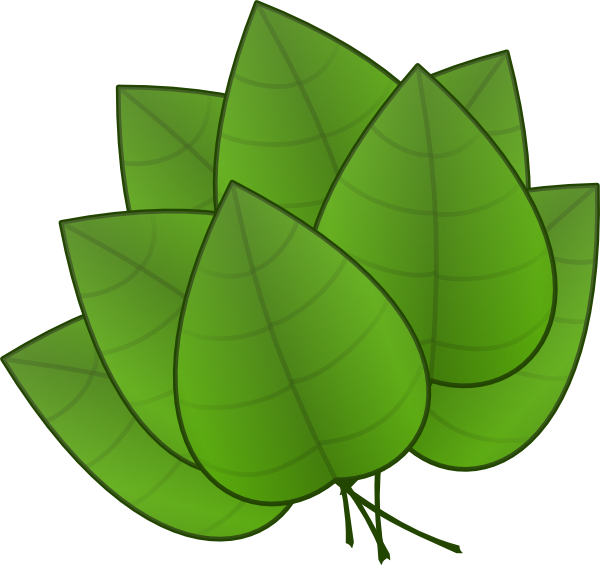 Outside clipart plant. Free jungle leaves preschool
