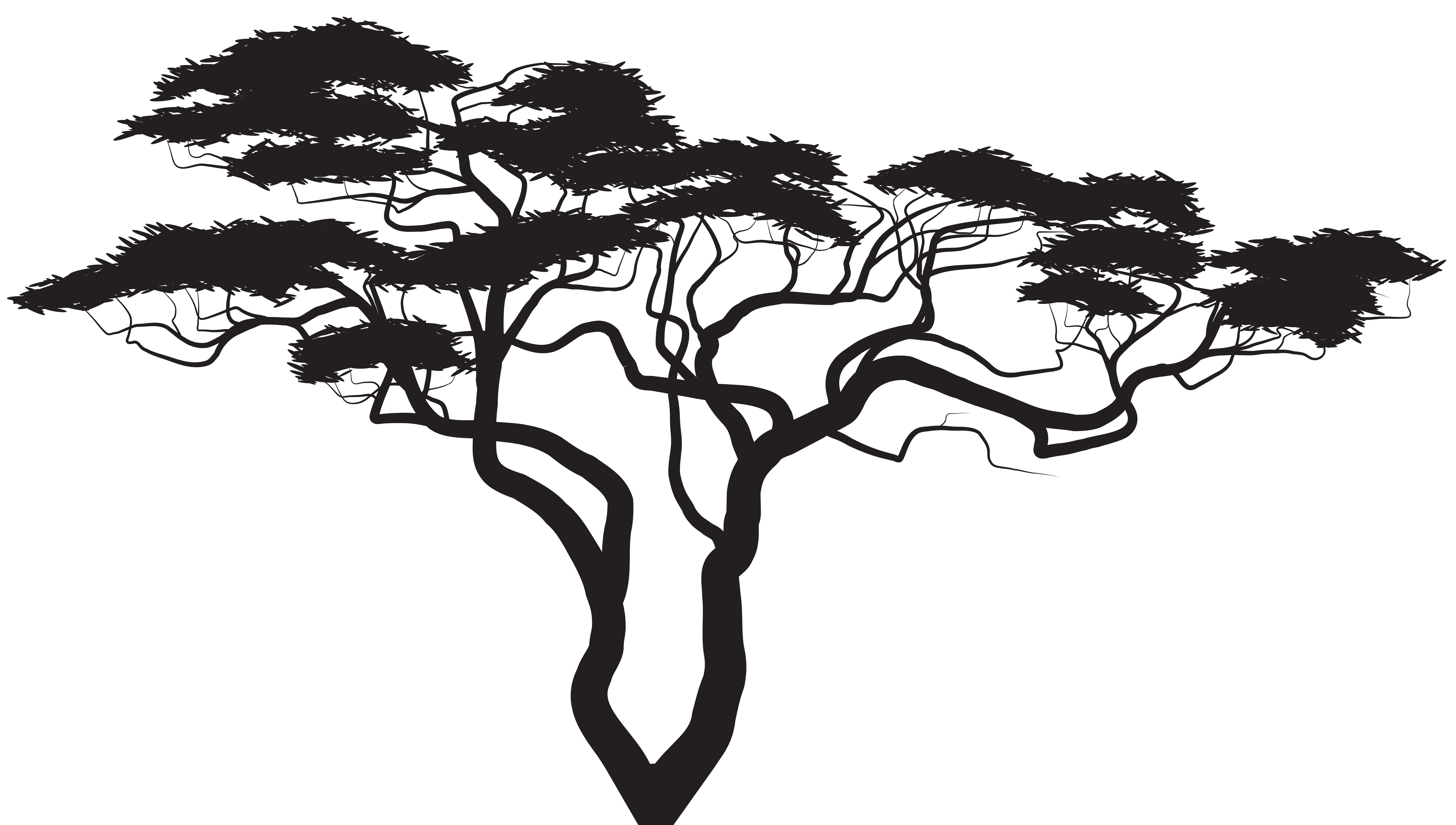 Trail clipart nature scenery. Exotic tree silhouette png
