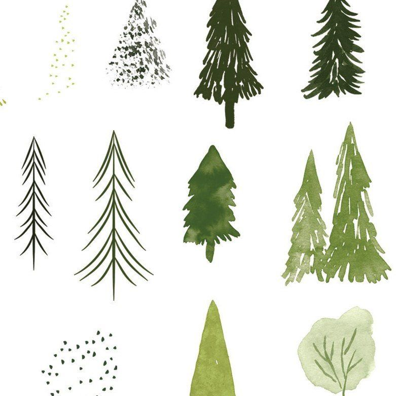 Watercolor trees set abstract. Clipart forest simple