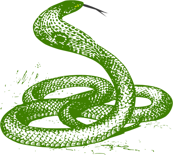 Green clip art at. Snake clipart viper snake
