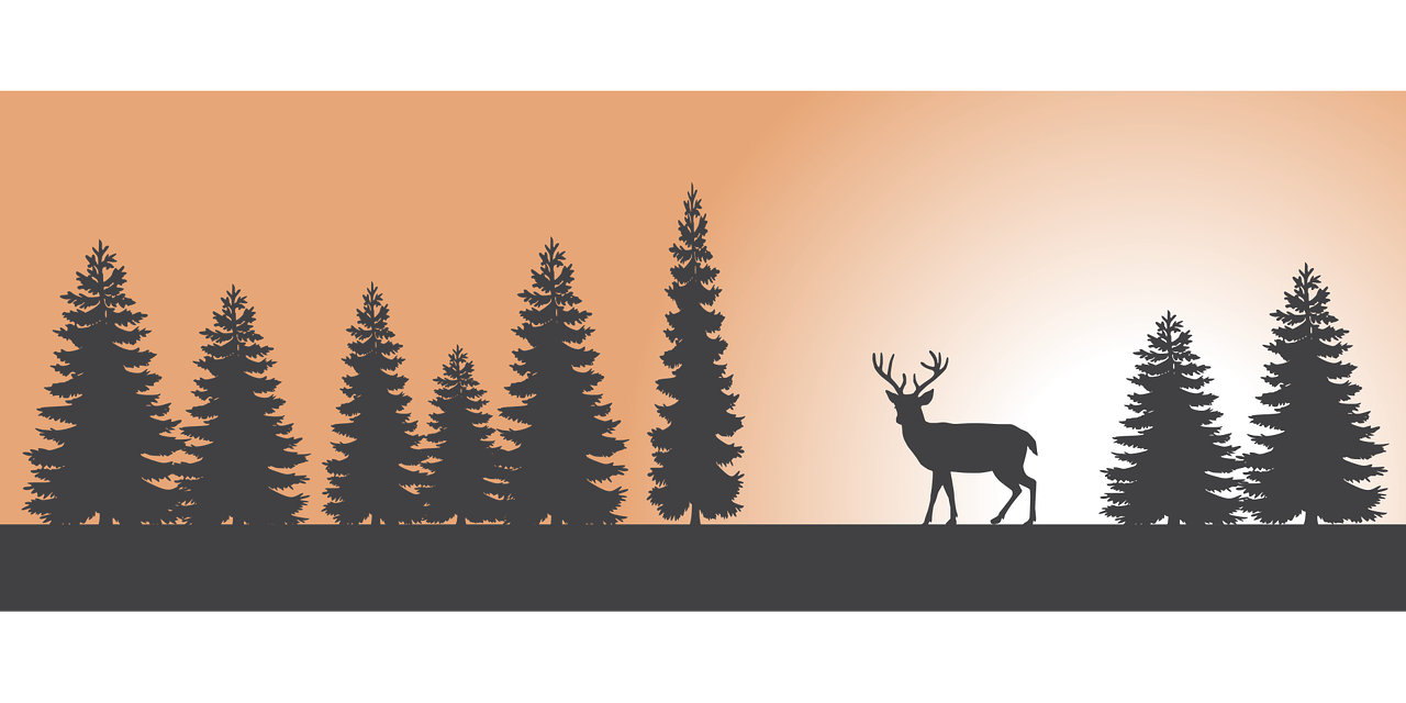 Deer nature landscape scenic. Sunset clipart forest