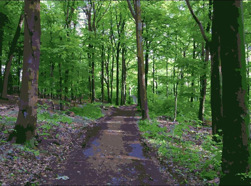 Trail clipart forest trail. Lichtscheid again medium image