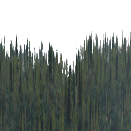 Roblox free . Clipart forest texture
