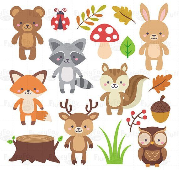Racoon clipart woodland owl. Animals forest animal clip