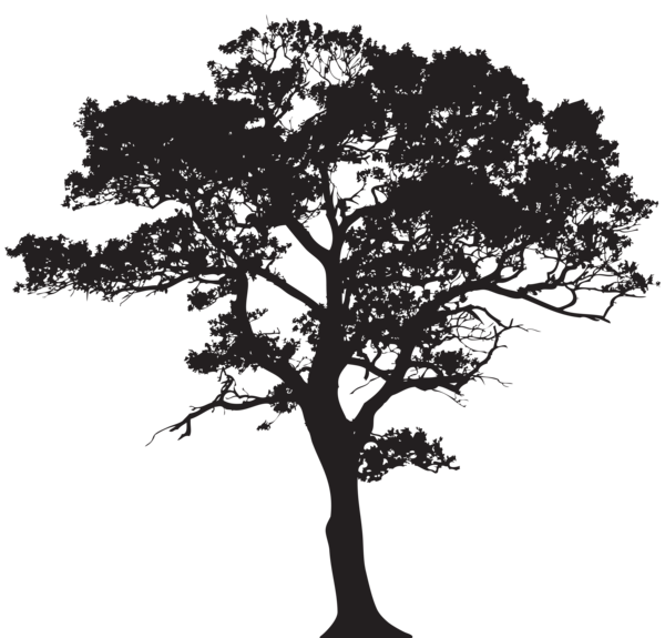 Tree clipart september. Silhouette png clip art