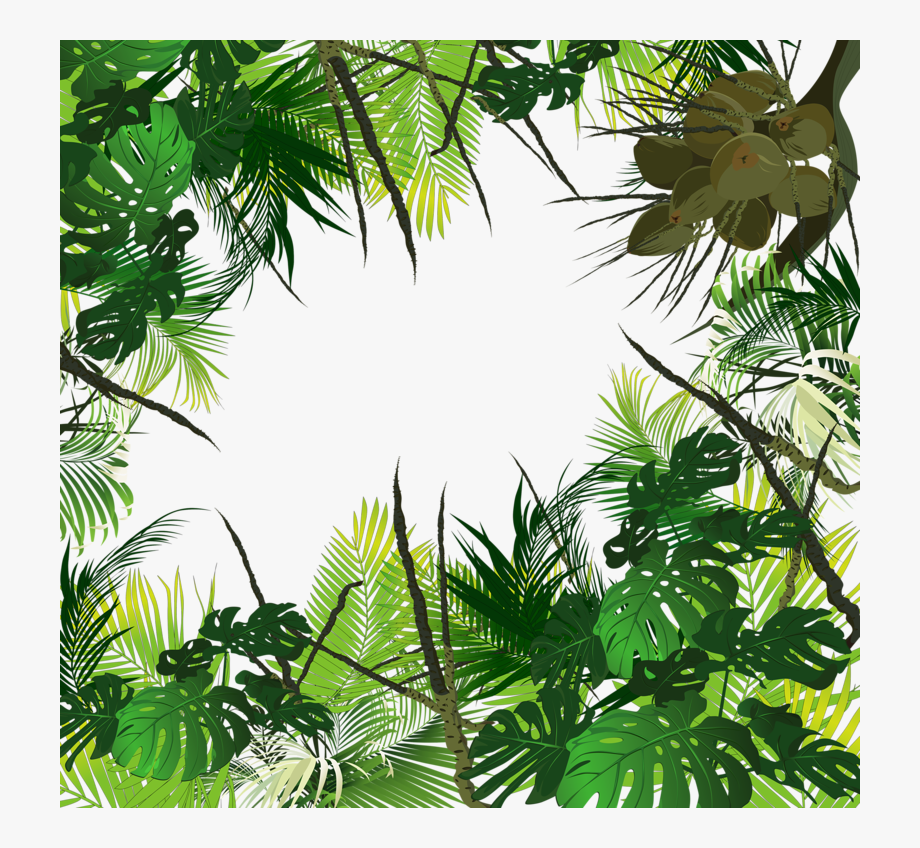 Clipart Forest Tropical Evergreen Forest Clipart Forest Tropical Evergreen Forest Transparent Free For Download On Webstockreview 2021 Rainforest tropical green leaves wallpaper wall murals | etsy. clipart forest tropical evergreen