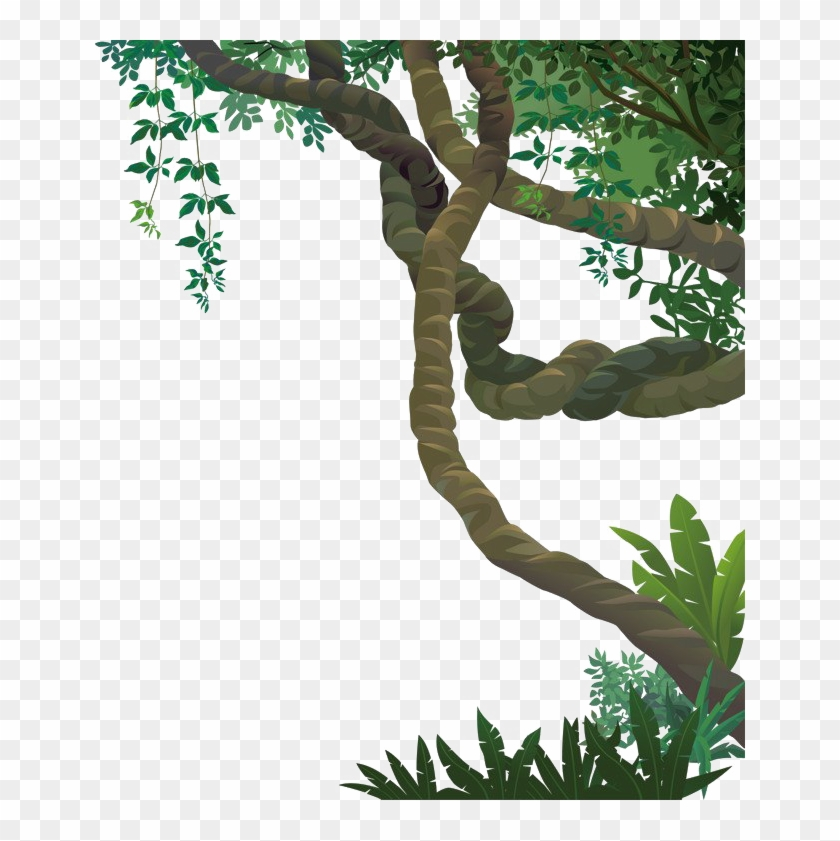 Vines clipart forest. Jungle png file transparent