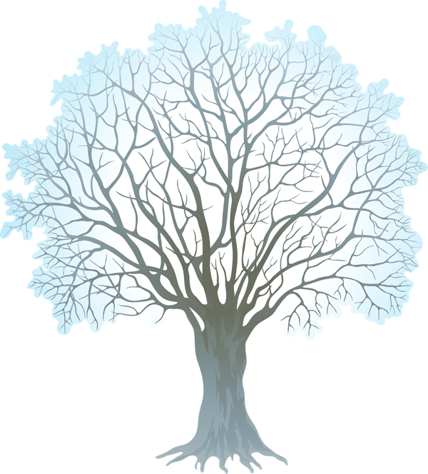 Web design development pinterest. Tree clipart winter
