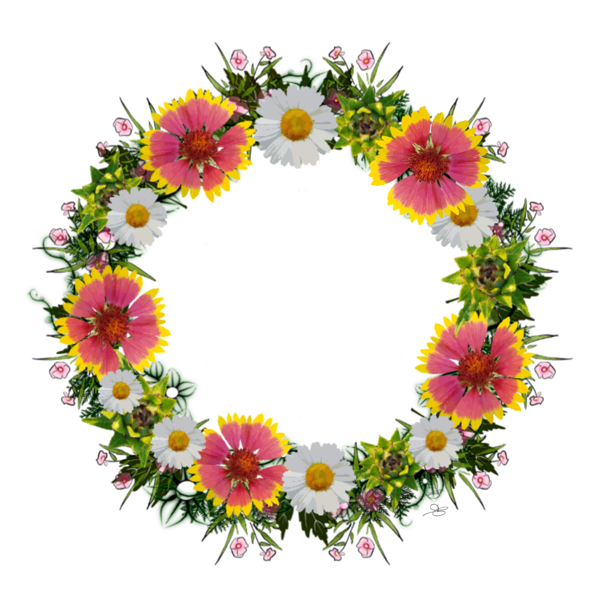 Daisy rose collection wreaths. Clipart winter wreath