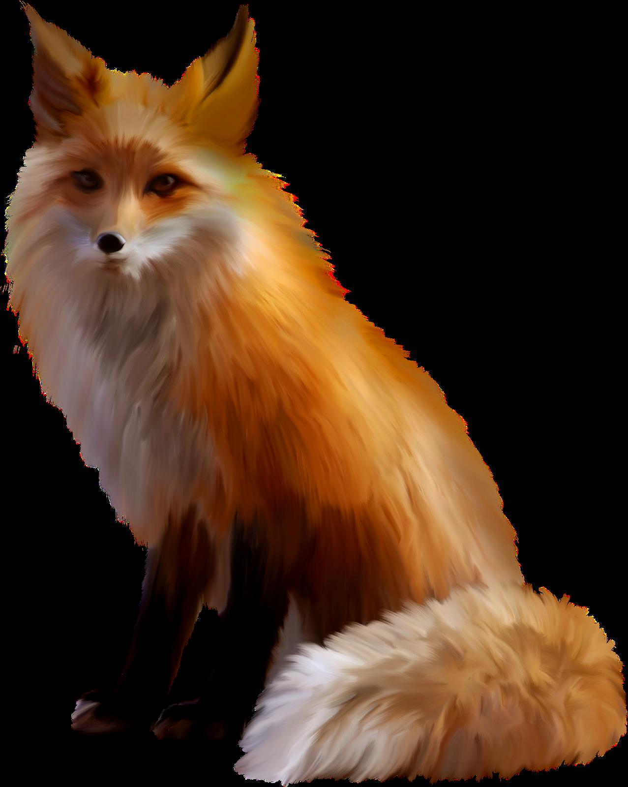Clipart fox arctic fox. Red clip art transprent