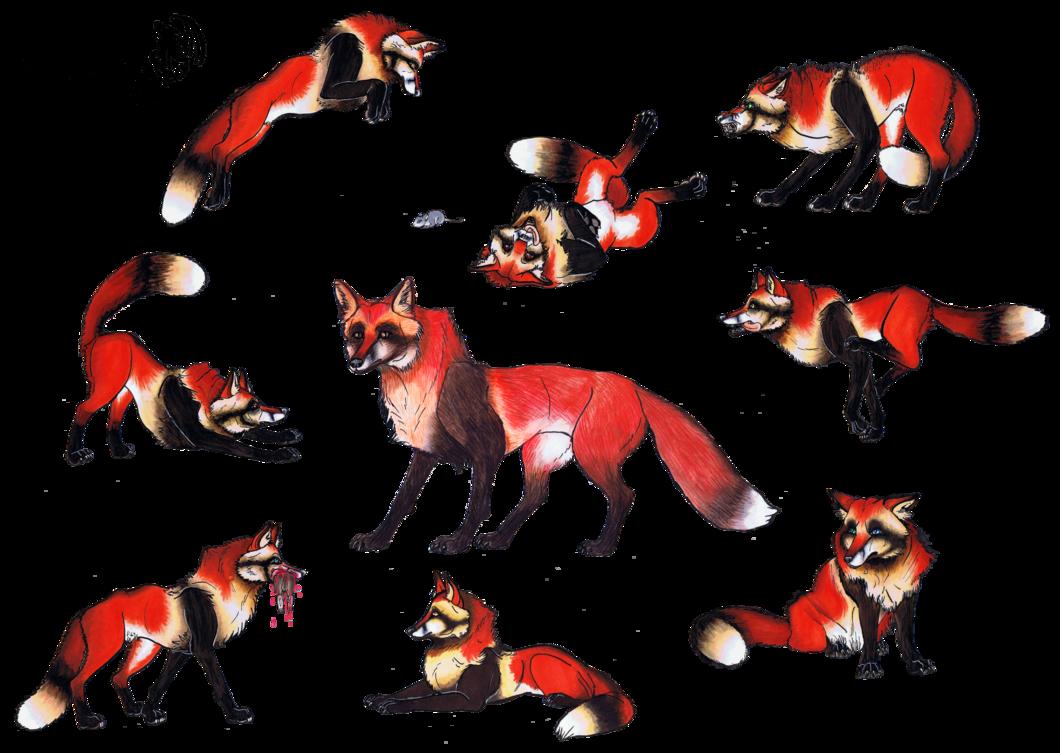 Tanukitsune the raccoon fox. December clipart werewolf